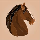 stock photo of stallion  - The head of a brown horse stallion drawing vector illustration - JPG
