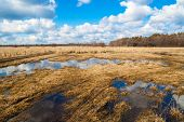 stock photo of groundwater  - Landscape with flooded dirt road in a meadow in early spring - JPG