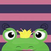 stock photo of pet frog  - fun princess  - JPG