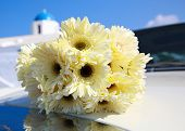 stock photo of chrysanthemum  - Bouquet of yellow chrysanthemums on the hood of the car - JPG