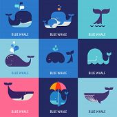 pic of googly-eyes  - Collection of vector whale icons and illustrations - JPG