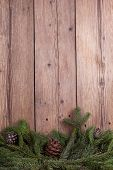 pic of bump  - christmas tree branches with bumps on wooden background - JPG