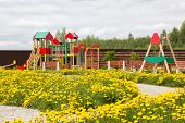 Постер, плакат: Children Playground Among Blossoming Dandelions