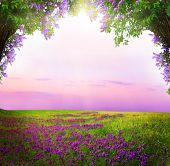 Fantasy  background . Magic forest.Beautiful spring  landscape.Lilac trees in blossom  poster