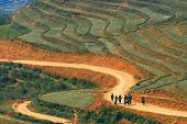picture of hmong  - Traveler and hmong villager walk at Curve Dirt road in sapa with and paddle rice field - JPG