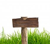 pic of ling  - Wood sign with grass isolated on a white background - JPG