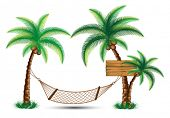 hammock under the palm trees vector