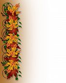 image of fall leaves  - Illustration composition of colorful fall leaves for Thanksgiving invitation border or background with copy space - JPG