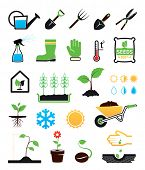 stock photo of root-crops  - Gardening icons set - JPG