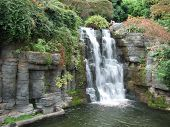 image of opryland  - Waterfall at the Gaylord Opryland Hotel in Nashville Tennessee - JPG