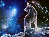 stock photo of cosmic  - Goat is a mystical zodiac animal - JPG