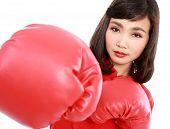Постер, плакат: Молодая женщина носить перчатки боксерские