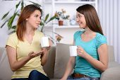 image of conversation  - Two happy young female friends with coffee cups conversing in the living room at home - JPG