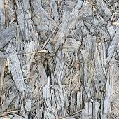 picture of shivering  - Wooden weathered grey pressed shavings natural background - JPG