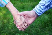 image of elderly couple  - Holding hands of elder married couple with green grass in background - JPG