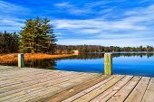 stock photo of dock a pond  - Dock overlooking a wilderness lake  Ludington State Park  Ludington - JPG