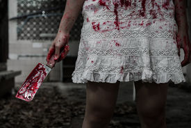 picture of terrific  - Suicidal girl in haunted school with cleaver - JPG