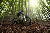 picture of descending  - Rider in action at Freestyle Mountain Bike Session - JPG
