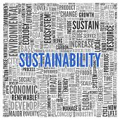 image of sustainable development  - Close up Blue SUSTAINABILITY Text at the Center of Word Tag Cloud on White Background - JPG