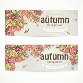 foto of acorn  - two horizontal banners with the image of autumn leaves, chestnuts, acorns and berries of viburnum.