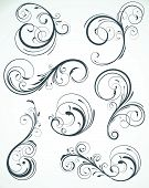 stock photo of tendril  - Vector illustration set of swirling flourishes decorative floral elements - JPG