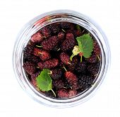 pic of mulberry  - Ripe mulberry berries in a glass jar freshly picked - JPG