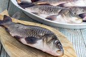 foto of freshwater fish  - freshwater fish carp on a wooden board living - JPG