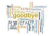 stock photo of goodbye  - Background concept word cloud multi - JPG