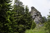 image of bavarian alps  - View to mountain top in the Bavarian Alps Germany - JPG