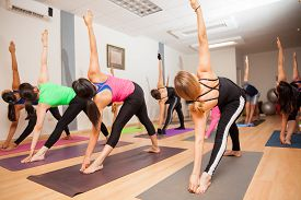 picture of yoga  - Large group of people holding the triangle pose during a yoga class at a gym - JPG