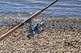 image of coil  - The blue coil for fishing on a spinning in the sunny summer day - JPG