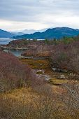 foto of carron  - The beautiful colors of a loch in Scotland - JPG