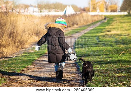 poster of Small Child Is Walking A Labrador Retriever Puppy. Kid And Labrador Retriever Dog For A Walk. Best F