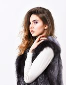 Silver Fur Vest Fashionable Clothing. Luxury Furry Accessory. Girl Makeup Face Long Hairstyle Wear F poster