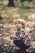 Active Kid Play In Autumn Forest. Active Rest On Fresh Air For Kid. poster