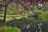 Lake and trees in well-known gardens Butchart Gardens on island Vancouver poster