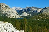 Valley in well-known mountain park Yosemite. Pines and mountains poster