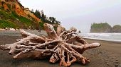 Scenic Nature Washington State - Ruby Beach (olympic National Park).. poster