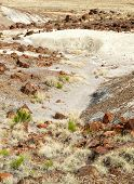 picture of paleozoic  - painted desert landscape and petrified wood - JPG