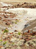 image of paleozoic  - painted desert landscape and petrified wood - JPG
