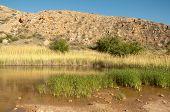 image of bottomless  - pasture lake - JPG