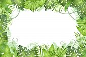 Jungle Background. Tropical Leaves Frame. Rainforest Foliage Plants, Green Grass Trees. Paradise Afr poster