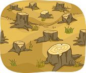 stock photo of deforestation  - Illustration of Tree Stumps showing Deforestation - JPG