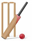pic of cricket  - set equipment for cricket vector illustration isolated on white background - JPG