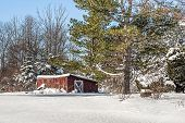 picture of blanket snow  - A blanket of snow covers trees and an old out building - JPG