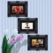 picture of pooch  - Pooches and pets in vintage frames at home - JPG
