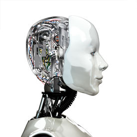 pic of cyborg  - A robot woman head with internal technology  - JPG