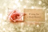 stock photo of get well soon  - Wishing You a Speedy Recovery message with vintage rose - JPG