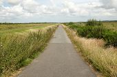 stock photo of anglesey  - A tarmac cycle track leads through marshland Lon Cyfni Anglesey Wales UK - JPG