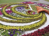 stock photo of cornucopia  - Beautiful flower flowerbed in the Park on the waterfront of the river Svisloch in Minsk Belarus - JPG